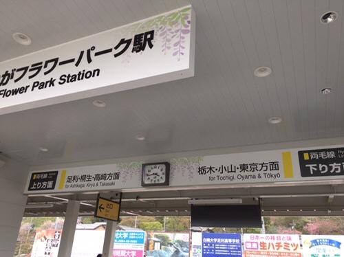 あしかがフラワーパーク駅2