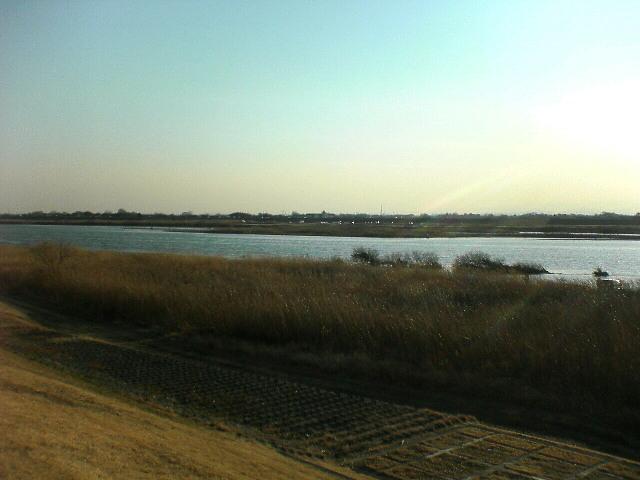 なかさと公園の対岸